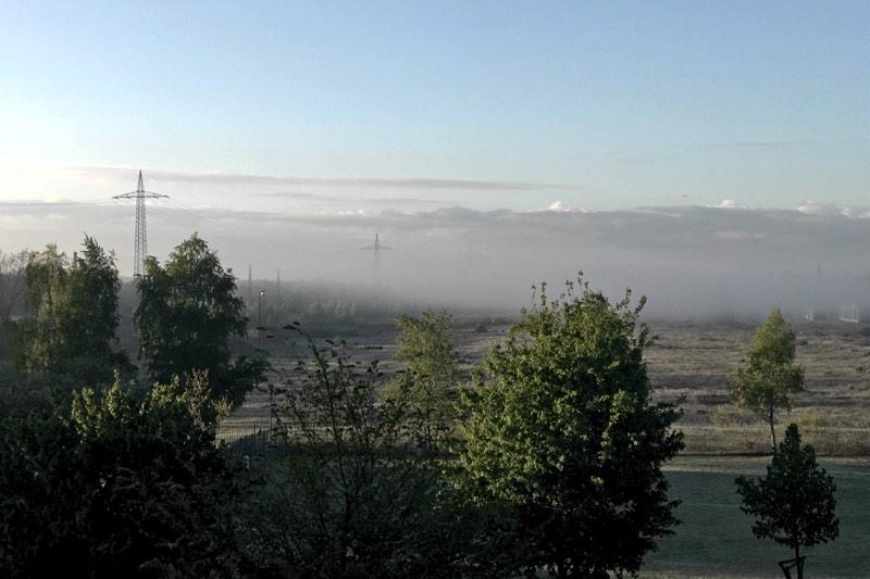 Landschaftsbild mit Nebel zur Morgenstunde