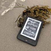 """Buchcover """"Es ist gefährlich, bei Sturm zu schwimmen"""" von Ulla Scheler"""
